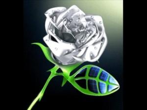 Glass rose thumb